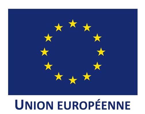 """Résultat de recherche d'images pour """"union européenne logo"""""""