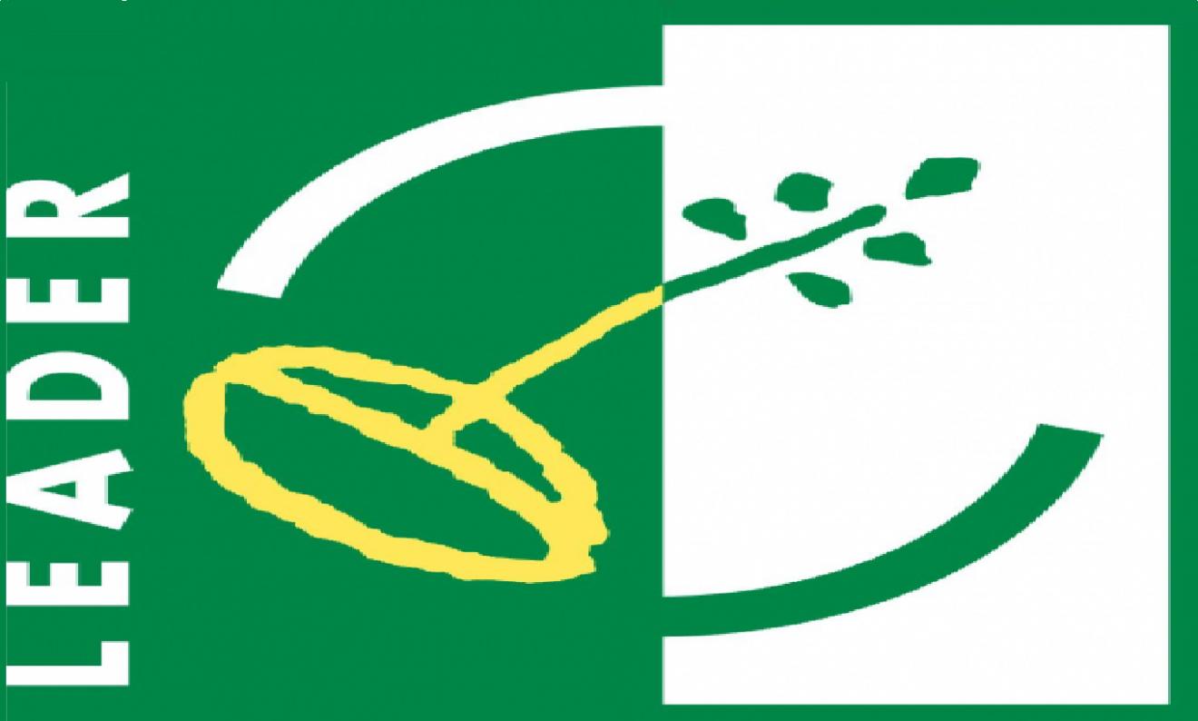 logo leader nl
